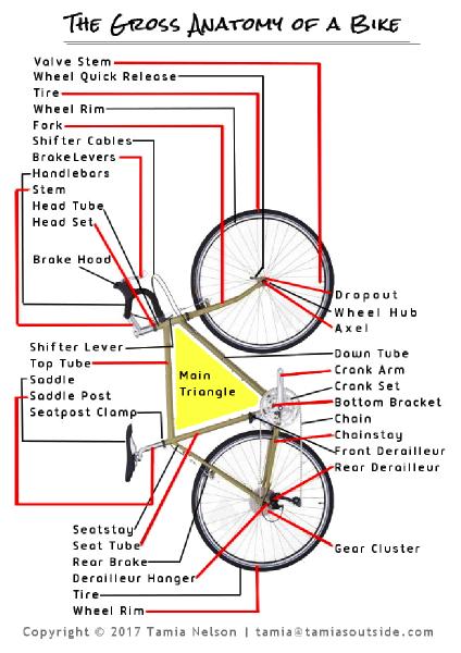 Bicycle Parts - (c) Tamia Nelson - Verloren Hoop - Tamiasoutside.com