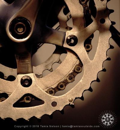 Crank Study - (c) Tamia Nelson - Verloren Hoop - Tamiasoutside.com