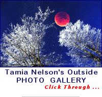 Tamia Nelson's Zenfolio Gallery
