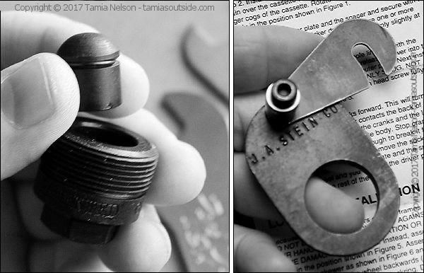 Petra's Special Tools Photo (c) Tamia Nelson