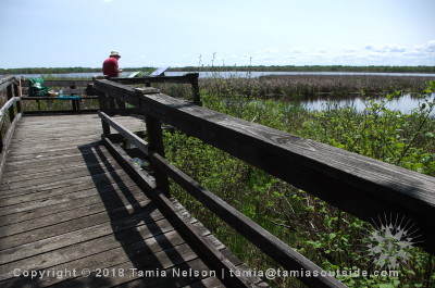 Out on the Boardwalk - (c) Tamia Nelson - Verloren Hoop - Tamiasoutside.com