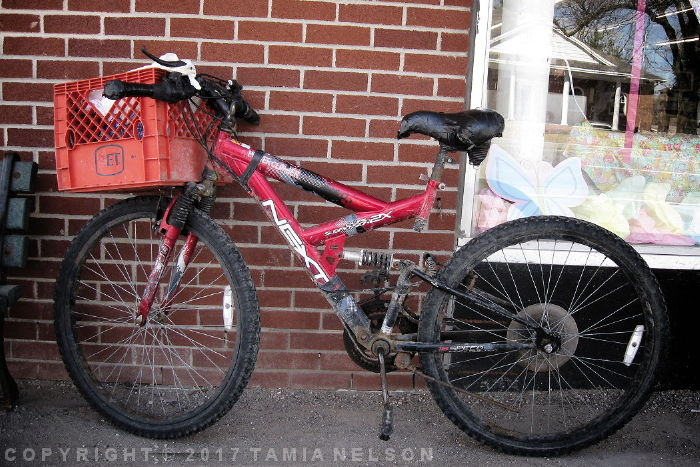 Winter Beater Bike by Tamia Nelson